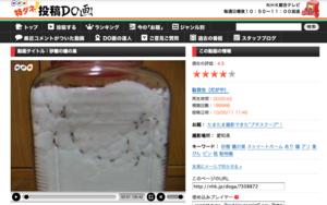アリは砂糖でも巣を作る?砂糖のビンにアリを入れた実験動画に注目