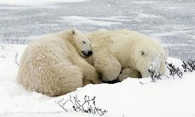 熱帯夜でもぐっすり眠りたい!エアコンを使わない「快眠」のコツ