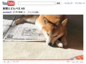思わずモフモフしたくなる、素朴でかわいい「柴犬動画」5つ