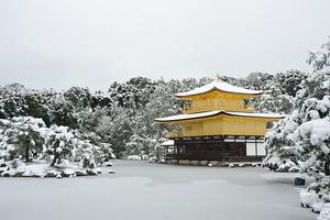 雪と梅の名所、大河ドラマ「江」ゆかりのスポットも 冬の京都観光案内