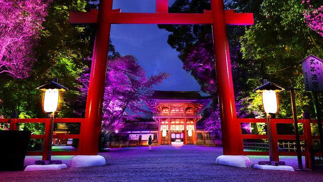 京都で「下鴨神社 糺の森の光の祭」8/17から チームラボによる神秘的なライトアップイベント