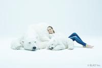 本物のようなシロクマと一緒に暮らせる 動物美術造形「Animals As Art」シリーズ第1弾