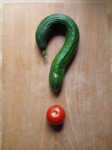 冷蔵する or しないも一目で分かる!「野菜」をおいしく保存する方法