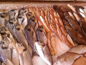 """魚の""""旬""""や、新鮮な魚の見分け方を知ろう 押さえておきたい魚の豆知識"""